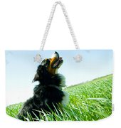 A Cute Dog On The Field Weekender Tote Bag