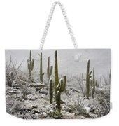 A Desert Blizzard  Weekender Tote Bag by Saija  Lehtonen