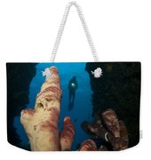 A Diver Looks Into A Cavern Weekender Tote Bag by Steve Jones