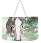 A Donkey Day Weekender Tote Bag