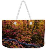 A Fall Forest  Weekender Tote Bag