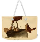 A Family Of House Wrens Weekender Tote Bag