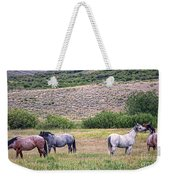 A Family Squabble Weekender Tote Bag