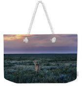 A Female Cheetah, Acinonyx Jubatus Weekender Tote Bag