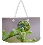 A Fiddlehead Abstract Weekender Tote Bag