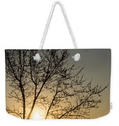 A Filigree Of Branches Framing The Sunrise Weekender Tote Bag