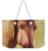A Fine Horse Weekender Tote Bag