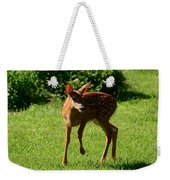 A Fine Little Fawn Weekender Tote Bag