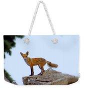 A Fox On The Rocks Weekender Tote Bag
