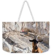 A Goat Hanging Out At The Base Weekender Tote Bag