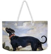 A Greyhound Lurking Weekender Tote Bag