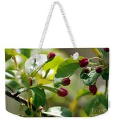 A Group Of Red Tree Flowers Weekender Tote Bag