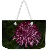 A Happy Birthday Wish With An Elegant Maroon And Pink Mum Weekender Tote Bag