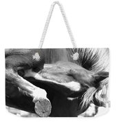 A Hard To Reach Itch Bw Weekender Tote Bag