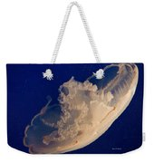 A Hat Never To Be Worn  Weekender Tote Bag by Angela A Stanton