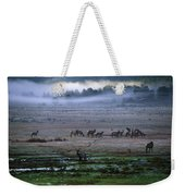 A Heard Of Elk Graze In A Misty Meadow Weekender Tote Bag