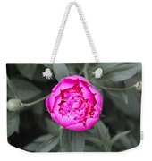 A Hint Of Pink In The Garden Weekender Tote Bag