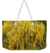 A Horse And A Willow Tree Weekender Tote Bag