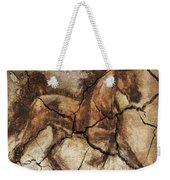 A Horse - Cave Art Weekender Tote Bag