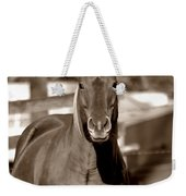 A Horse Is A Horse II Weekender Tote Bag