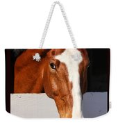 A Horse Is A Horse Of Course By Diana Sainz Weekender Tote Bag