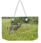 A Late Summer's Morning Weekender Tote Bag