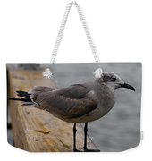 A Laughing Gull Weekender Tote Bag