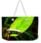 A Leaf... Weekender Tote Bag