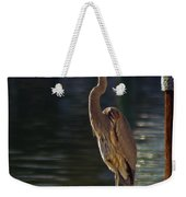 A Leg To Stand On Weekender Tote Bag