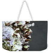 A Lichen Abstract 2013 Weekender Tote Bag