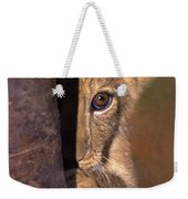 A Lion Cub Plays Hide And Seek Wildlife Rescue Weekender Tote Bag