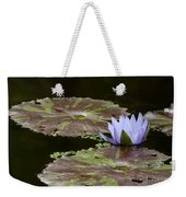 A Little Lavendar Water Lily Weekender Tote Bag