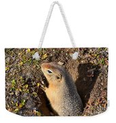 A Little Resident Of Denali Weekender Tote Bag