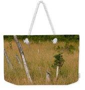 A Marsh In Maine Weekender Tote Bag