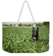 A Military Working Dog Sits In A Field Weekender Tote Bag by Stocktrek Images