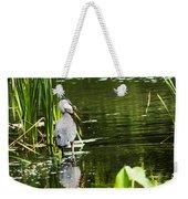 A Missing Frog Weekender Tote Bag