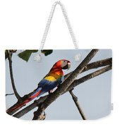 A Moment Of Rest Weekender Tote Bag