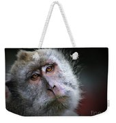 A Monkey's Look Weekender Tote Bag