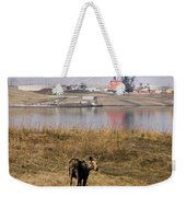 A Moose Walks On The On Reclaimed Land Weekender Tote Bag
