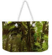 A Moss Covered Tree  In The Ho National Rain Forest Weekender Tote Bag