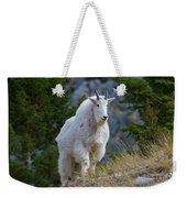 A Mountain Goat Stands On A Grassy Weekender Tote Bag