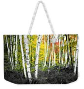 A Painting Autumn Birch Grove Weekender Tote Bag