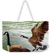 A Pair Of Canada Geese Landing On Rockland Lake Weekender Tote Bag