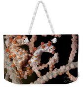 A Pair Of Pygmy Seahorse On Sea Fan Weekender Tote Bag