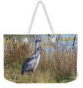 A Pair Of Sandhill Cranes Weekender Tote Bag