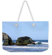 A Pair Of Seagulls On A Rock Weekender Tote Bag