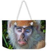 A Patas Baby Monkey Behaving Badly Weekender Tote Bag