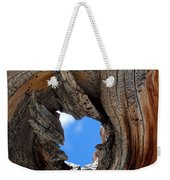 A Patch Of Blue Weekender Tote Bag