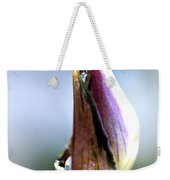 A Pearl In My Mouth - Water Droplets Weekender Tote Bag