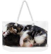 A Pile Of Pussies Weekender Tote Bag